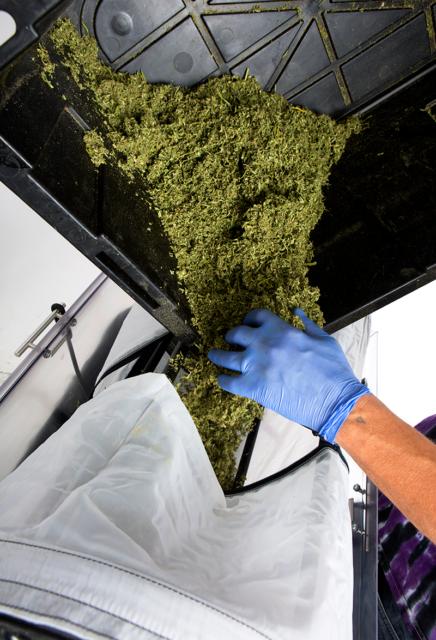 Loading XL Resinator Biomass easy kief fast